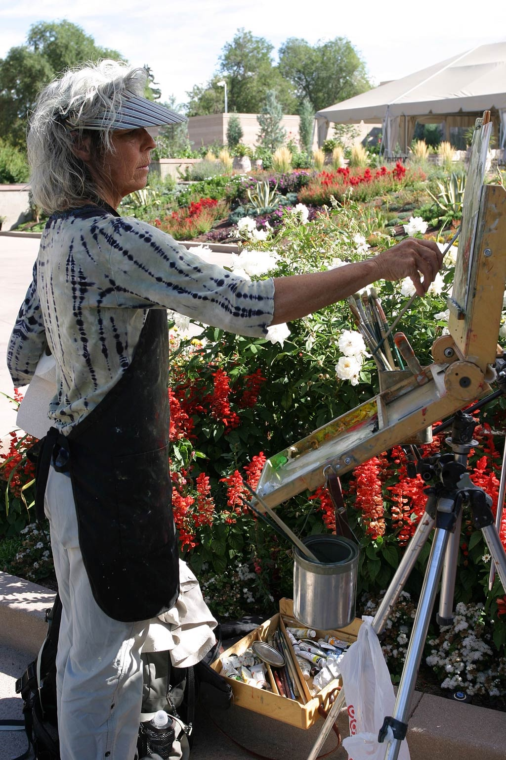 2012 Altitude Attitude Paint Out Site Locations Evergreen Denver Botanic Gardens And