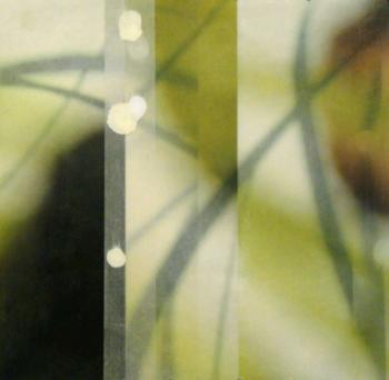 Guthridge,-Jane_The-Space-Between-28_representative-image