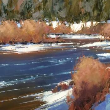 DWMayer_WITW16_South-Platte-River-Shores_20x30.72-thumb