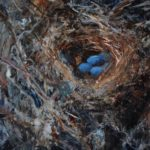 mack-karol-robins-nest-10-x-8-oil__1000-square
