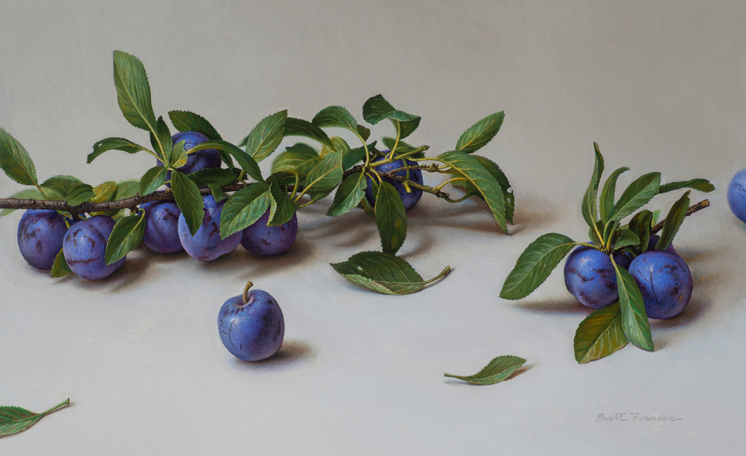 Fraser,-Scott,-Arrowleaf-Plums,-Oil-on-board,-11-x-18,-$14,000